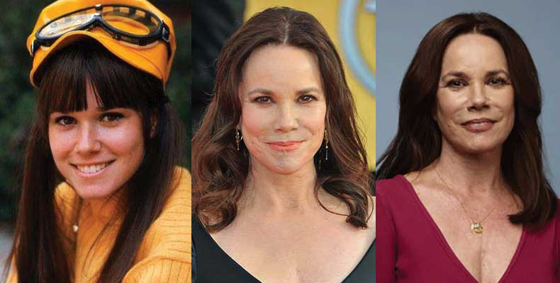 Barbara Hershey Plastic Surgery Before and After 2020